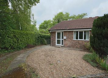 Thumbnail 2 bed semi-detached bungalow to rent in Meadow Bank, Penwortham, Preston