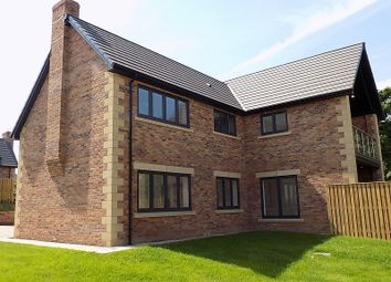 Thumbnail 5 bed detached house for sale in The Petteril, William's Pasture, Aglionby