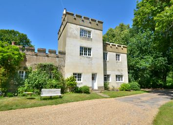 Coates Castle, Fittleworth, Pulborough RH20. 5 bed country house for sale