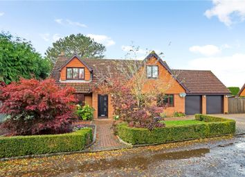 Thumbnail 4 bed detached house for sale in Potters Field, Liss, Hampshire