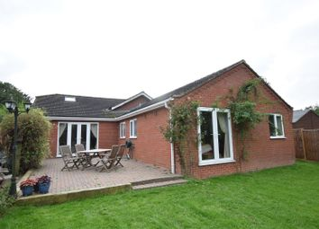 Thumbnail 4 bed detached bungalow for sale in Carleton Rode, Norwich