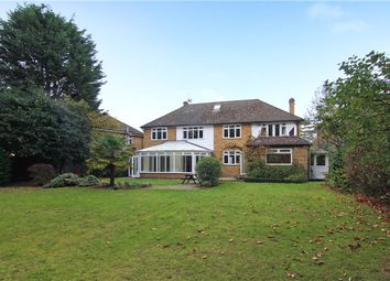 Thumbnail 5 bed detached house to rent in Coombe Neville, Coombe