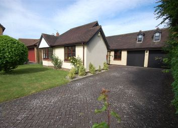 Thumbnail 3 bed detached bungalow for sale in The Spinnaker, South Woodham Ferrers, Essex