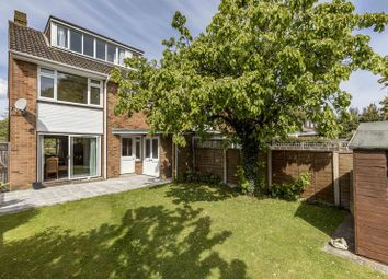 Thumbnail 4 bed semi-detached house for sale in Laurence Green, Emsworth