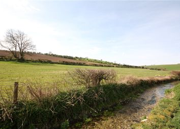 Thumbnail Land for sale in West Street, Winterborne Stickland, Blandford Forum, Dorset