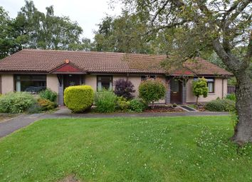 Thumbnail 2 bed semi-detached bungalow for sale in 41 Balmacaan Road, Drumnadrochit, Inverness