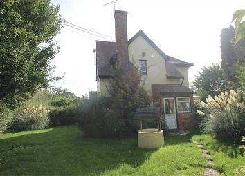 Thumbnail Semi-detached house to rent in Greenstead Green, Halstead, Essex