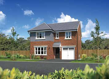 "Thumbnail 4 bedroom detached house for sale in ""Dukeswood"" At Kents Green Lane, Winterley, Sandbach CW1, Winterley, Cheshire,"
