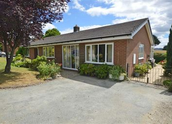 Thumbnail 3 bed detached bungalow for sale in 9, Maes Y Cwm, Llanwnog, Caersws, Powys