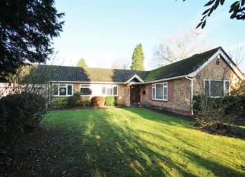 Thumbnail 5 bedroom detached bungalow for sale in New Road, Twyford