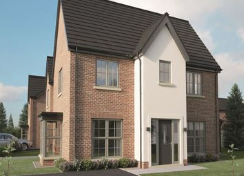 Thumbnail 3 bed semi-detached house for sale in Type E, Hydepark Mews, Newtownabbey