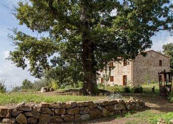 Thumbnail 1 bed country house for sale in Massa Marittima, Massa Marittima, Grosseto, Tuscany, Italy