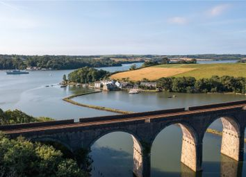 Thumbnail 6 bed property for sale in Antony Passage, Saltash, Cornwall