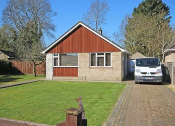 Thumbnail 2 bed detached bungalow to rent in Gainsborough Avenue, New Milton