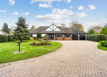Thumbnail 4 bed bungalow for sale in Hurtmore Chase, Hurtmore, Godalming, Surrey