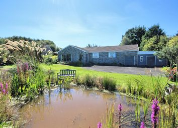 Thumbnail 4 bed detached bungalow for sale in 7 Millhall, Kirkcudbright