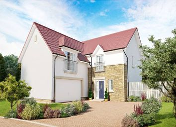 "Thumbnail 5 bed detached house for sale in ""Dewar"" at Penicuik Road, Roslin"