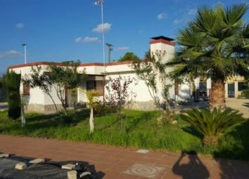 Thumbnail 3 bed country house for sale in Elche, Elche, Spain