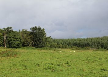 Thumbnail Land for sale in Garmony, Craignure, Isle Of Mull