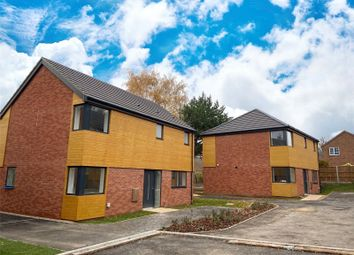 Thumbnail 3 bed detached house for sale in Globe Lane, Blofield, Norwich, Norfolk