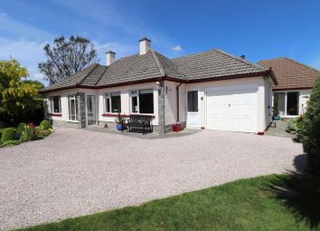 Thumbnail 5 bedroom bungalow for sale in Derril, Pyworthy, Holsworthy