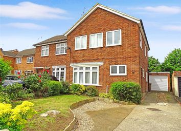 Thumbnail 3 bed semi-detached house for sale in Alder Drive, Chelmsford, Essex