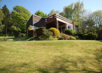 Thumbnail 5 bed detached house to rent in The Dell, Morpeth