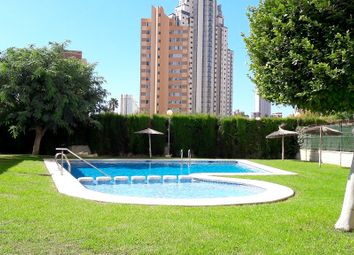 Thumbnail 1 bed apartment for sale in Benidorm, Alicante, Valencia