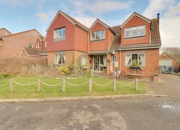 Thumbnail 4 bed detached house for sale in Dolphin Court North, Staines