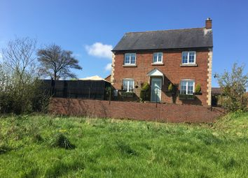 Thumbnail 4 bed detached house for sale in Great Ground, Shaftesbury