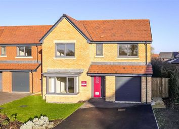 Thumbnail 4 bed detached house for sale in Cautley Drive, Harrogate, North Yorkshire