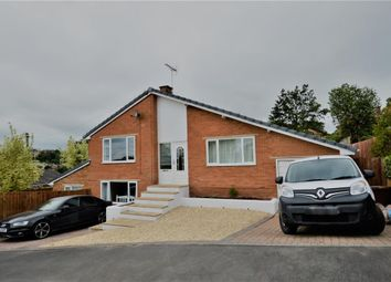 Thumbnail 4 bed detached bungalow for sale in Lame Johns Field, Crediton, Devon