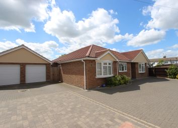 Thumbnail 4 bed detached bungalow for sale in Willow Close, Rayleigh