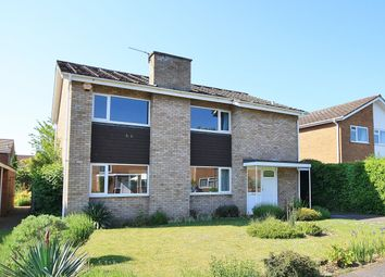 Thumbnail 4 bed property to rent in Carnoustie, Norwich