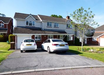 Thumbnail 4 bed detached house for sale in Morley Close, Plympton, Plymouth