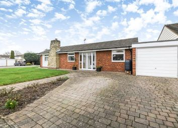 Thumbnail 3 bed bungalow for sale in Blackmore, Ingatestone, Essex