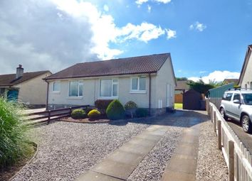 Thumbnail 1 bed semi-detached bungalow for sale in Georgetown Road, Dumfries, Dumfries And Galloway