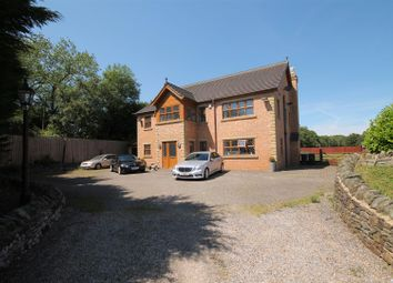Thumbnail 4 bed detached house for sale in The Meadow, St. Johns Mews, Burnhope, County Durham