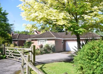 Thumbnail 3 bed detached bungalow for sale in Courts Hill Road, Haslemere, Surrey