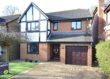 Thumbnail 4 bed detached house to rent in Anthony Wall, Warfield, Bracknell