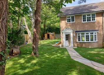 Thumbnail 3 bed terraced house to rent in West View, Uckfield