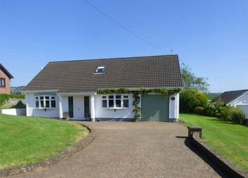 Thumbnail 4 bed detached bungalow for sale in Ty Twt, Meinciau Road, Mynyddygarreg, Carmarthenshire