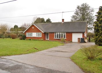 Thumbnail 3 bed detached bungalow to rent in Old Barn Lane, Rettendon Common, Chelmsford