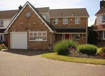 Thumbnail 4 bed detached house to rent in Roger Beck Way, Sketty, Swansea