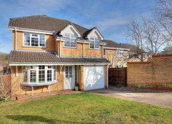 Thumbnail 4 bedroom detached house for sale in Hazel Close, Taverham, Norwich