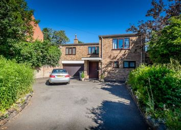 Thumbnail 4 bed property to rent in Chaveney Road, Loughborough, Leicestershire