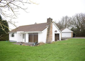 Thumbnail Detached bungalow to rent in West Lane, Dolton, Nr Winkleigh