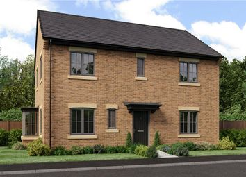 "Thumbnail 4 bed detached house for sale in ""The Stevenson"" at School Aycliffe, Newton Aycliffe"