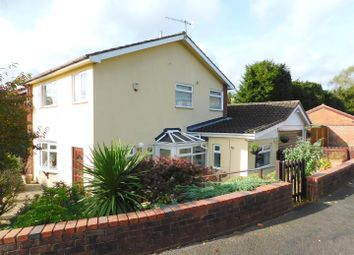 Thumbnail 4 bed detached house for sale in Brook Vale, Bewdley