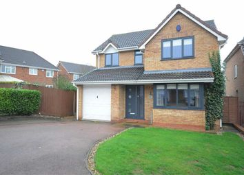Thumbnail 4 bed detached house to rent in Hoskings Close, Stone